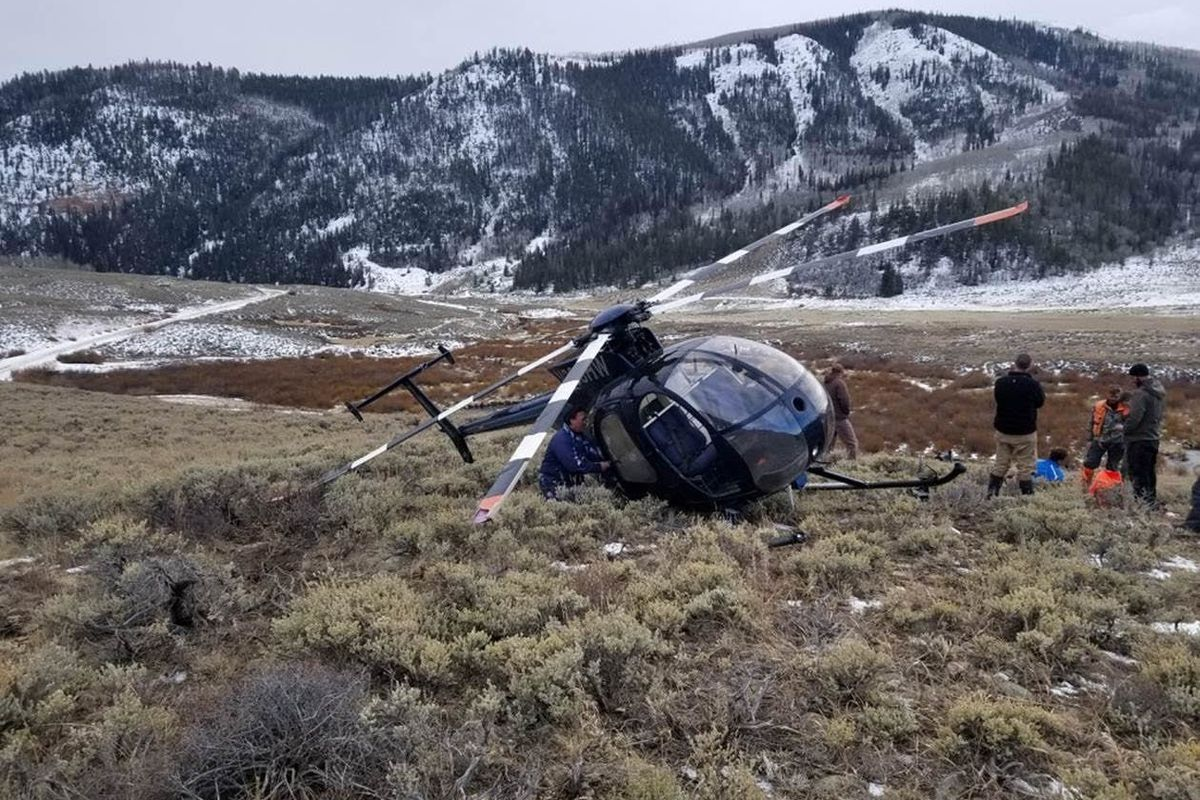 Elk fells helicopter in remote Wasatch County - Deseret News