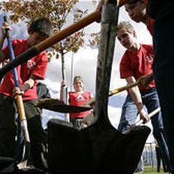 Students from Children's Christian School in Taylorsville plant a tree at the Ron Wood Baseball Complex on Monday.
