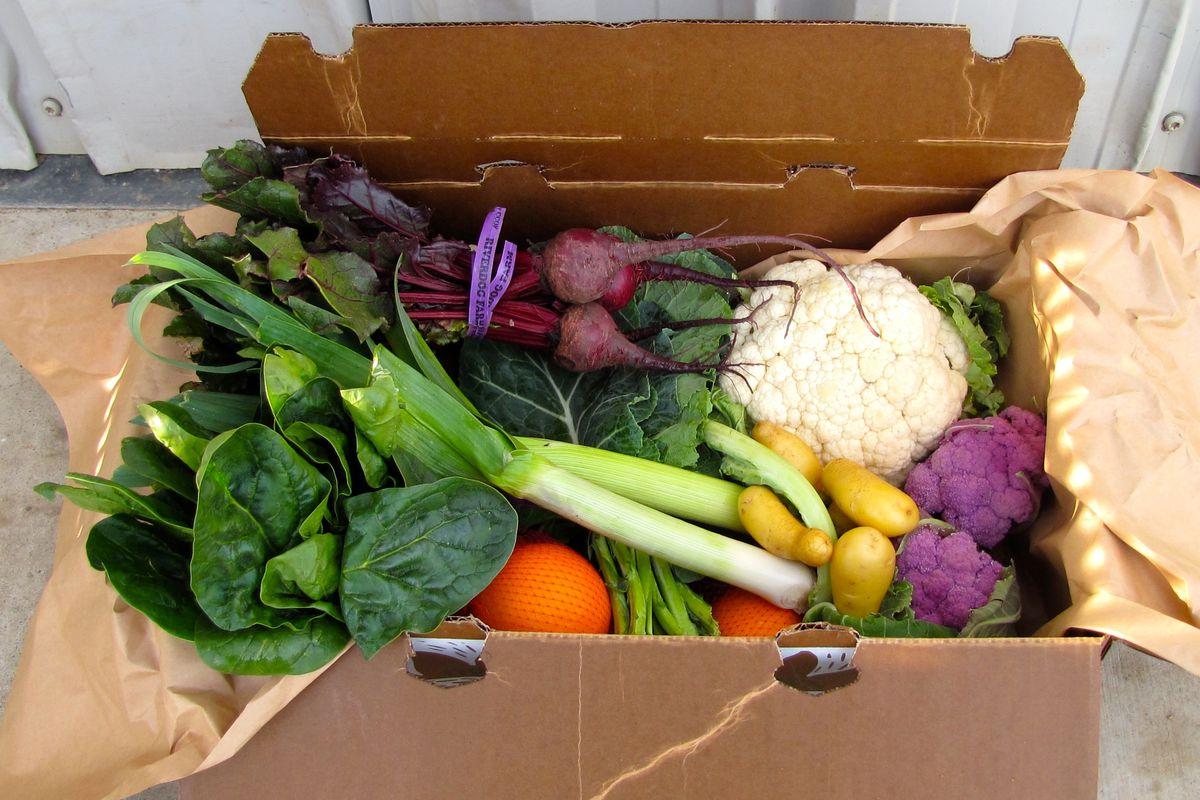 CSA box from Riverdog Farm