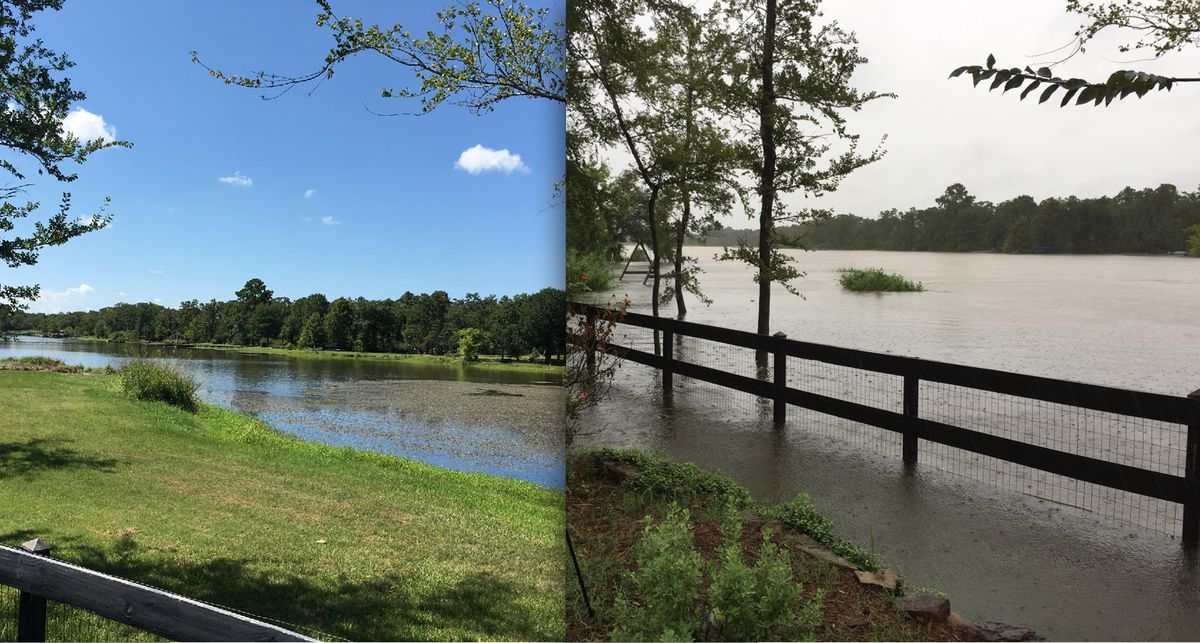 A lake behind Hannele Rubin's home was far away in July; flooding after Harvey brought the waters much closer to her College Station home.   Flooding photo provided; July photo by Maudlyne Ihejirika/Sun-Times