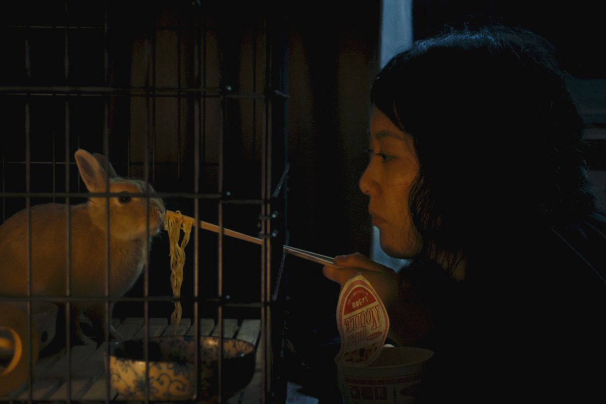 In the film Kumiko the Treasure Hunter, Rinko Kikuchi plays an incredibly lonely, possibly depressed woman who goes on an unlikely quest.
