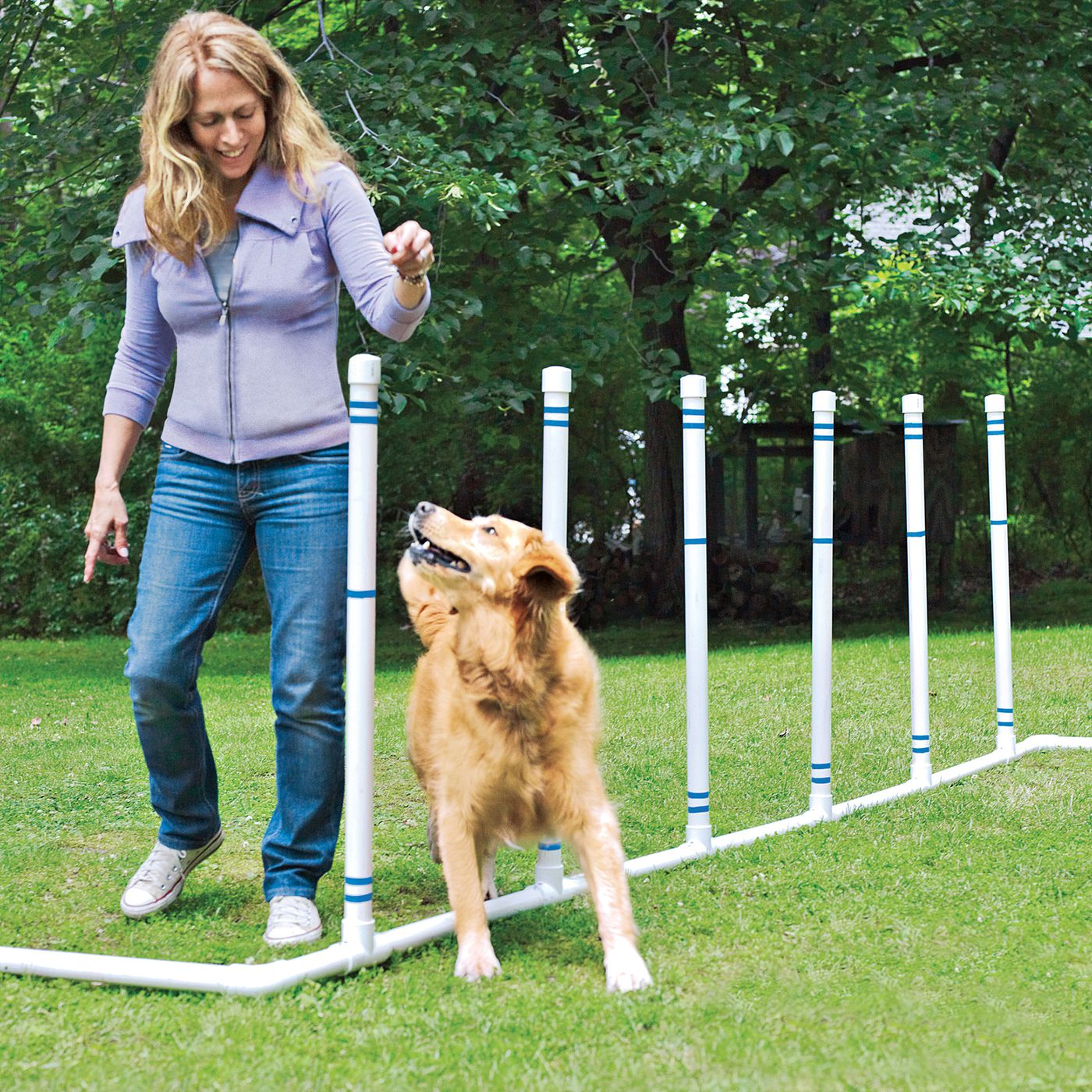 How To Build A Diy Dog Agility Course This Old House