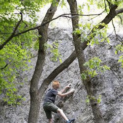 Noah Keithley boulders in Little Cottonwood Canyon in Salt Lake City on Thursday, June 1, 2017. The Salt Lake Climbers Alliance, The Church of Jesus Christ of Latter-day Saints and Access Fund announced the signing of an unprecedented lease for 140 acres in Little Cottonwood Canyon . The parcel, known as the Gate Buttress, is about a mile up the canyon and has been popular with generations of climbers because of its world-class granite. The agreement secures legitimate access to approximately 588 routes and 138 boulder problems at the Gate Buttress for rock climbers, who will be active stewards of the property. The recreational lease is the result of several years of negotiations between LDS Church leaders and the local climbing community.