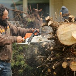 Stephen Kuhn uses a chain saw to cut up a tree that was felled by high winds in Ronna Hunter's yard in Farmington on Tuesday, Sept. 8, 2020.