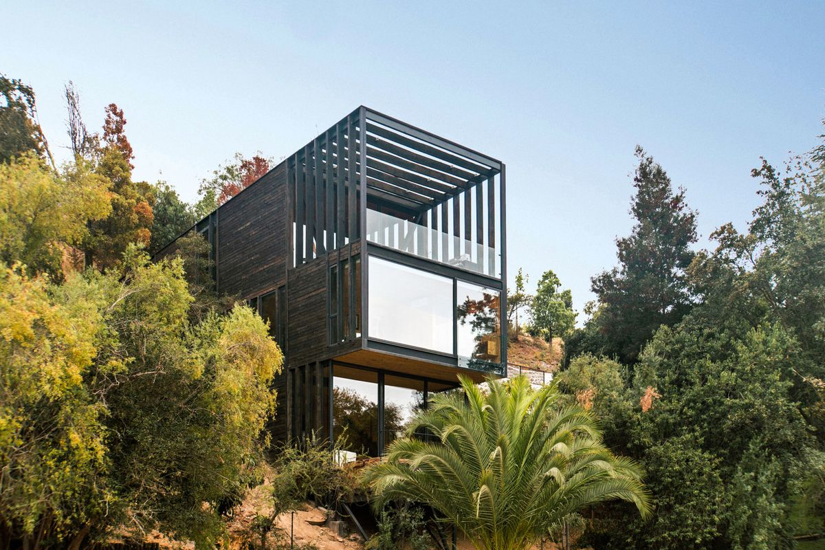 A boxy modern house with a top floor terrace pokes out of a forest.