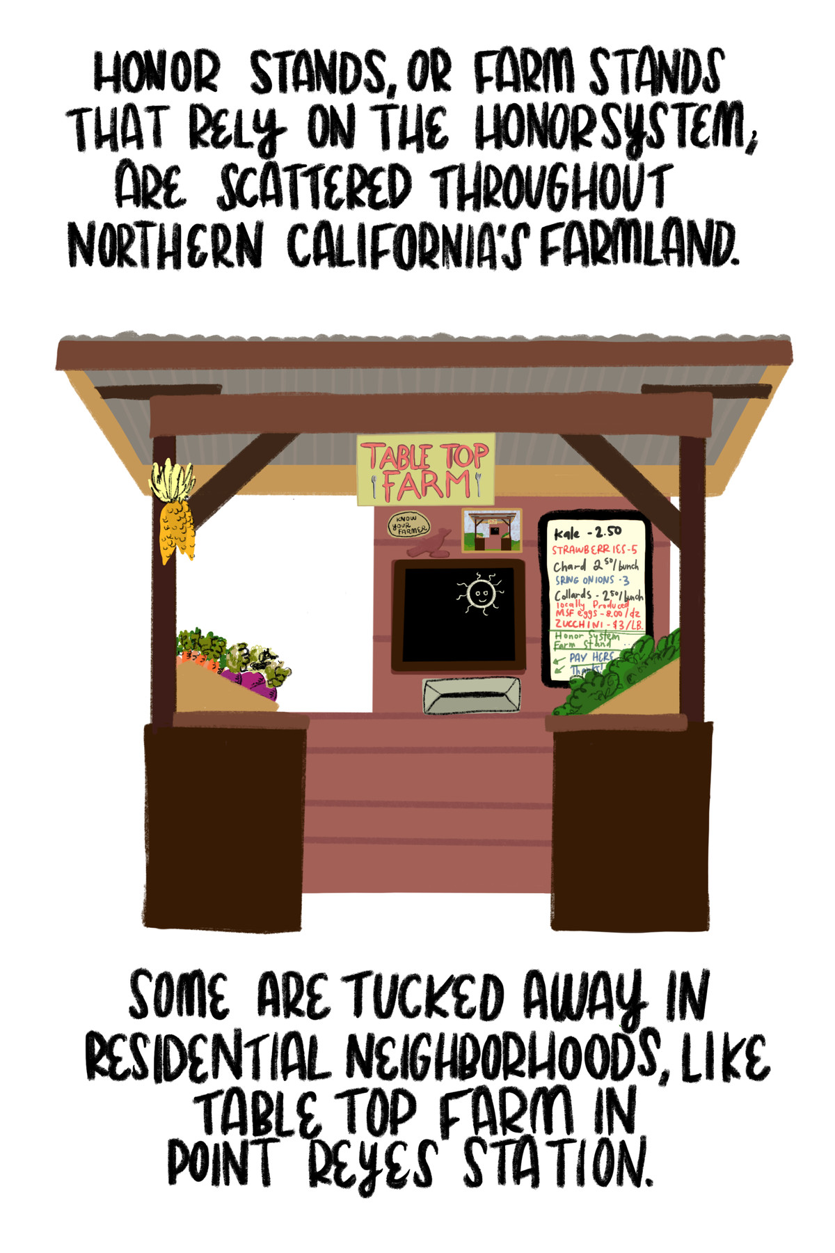 """""""Honor stands, or farm stands that rely on the honor system, are scattered throughout northern California's farmland. Some are tucked away in residential neighborhoods, like Table Top Farm in Point Reyes Station."""" [The illustration shows the farm stand with a sign advertising the produce for sale.]"""