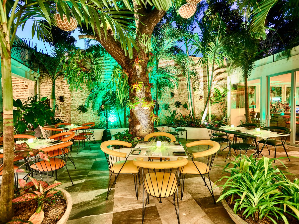 An interior courtyard with patio tables and chairs surrounded by large trees and lots of greenery, with green lights adding to the vibrant effect, and inside dining rooms visible to each side wrapping around the courtyard