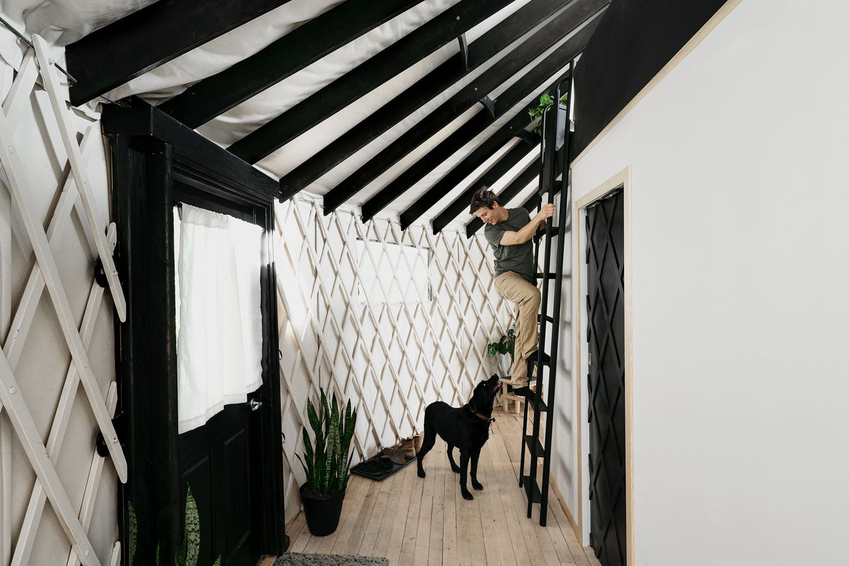 The interior of a yurt features a black ladder that goes to a lofted circular bed. A man is climbing the ladder and looking down at a black dog on the ground.