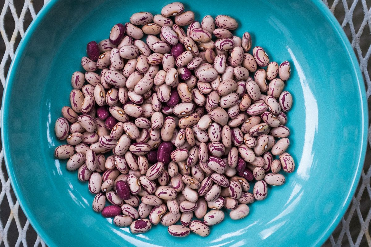 Purple and tan-and-purple-flecked beans in a blue bowl.