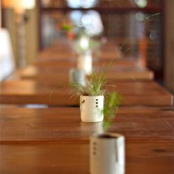 Individual wild plants decorate tables. Of note: Live oak, strawberry greens, and clover flowers.