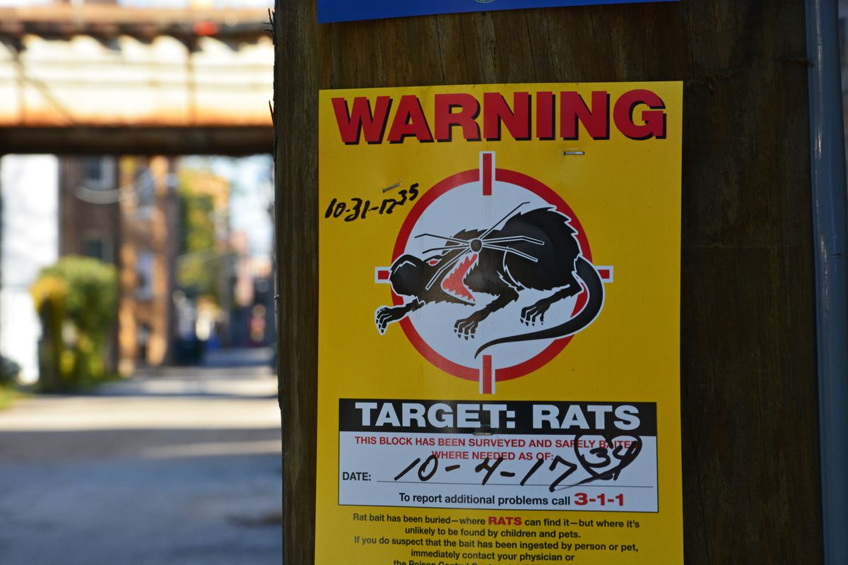 """A paper yellow sign from the city with a rat illustration pictured under red """"warning"""" text stapled to an alleyway pole with elevated tracks in the background."""