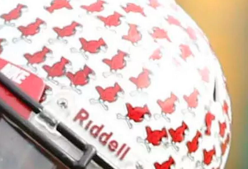 Illinois State Helmet Stickers