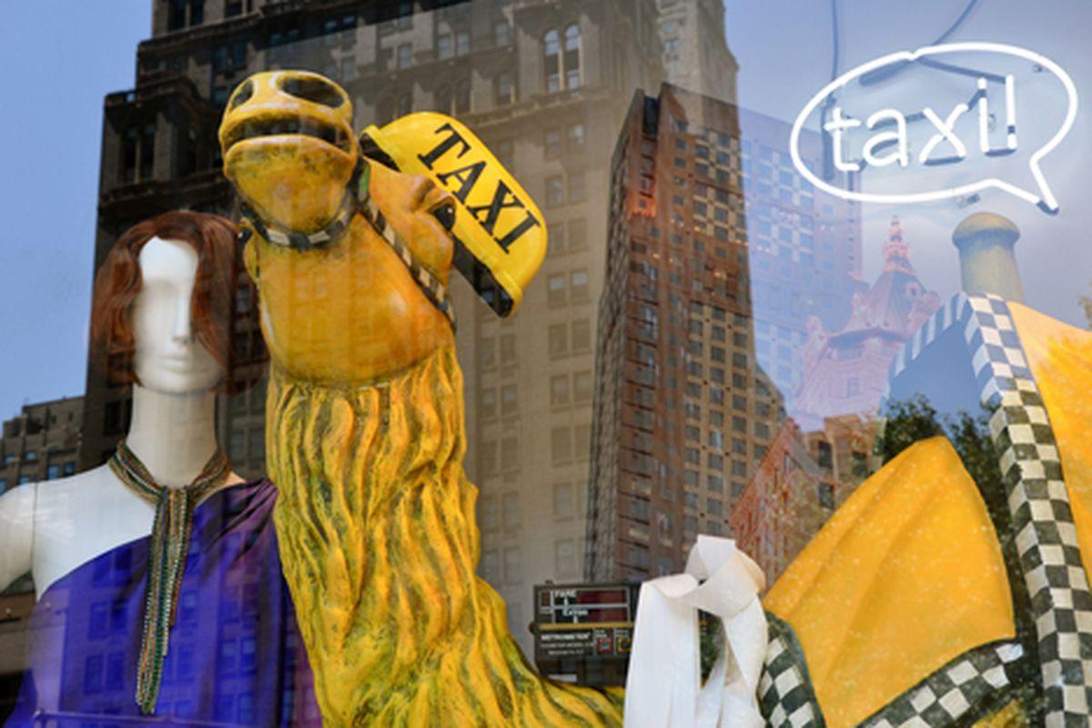 "Taxi camel window display via <a href=""http://www.flickr.com/photos/essgee/4665892811/in/pool-312691@N20"">EssG</a>/Racked Flickr Pool"