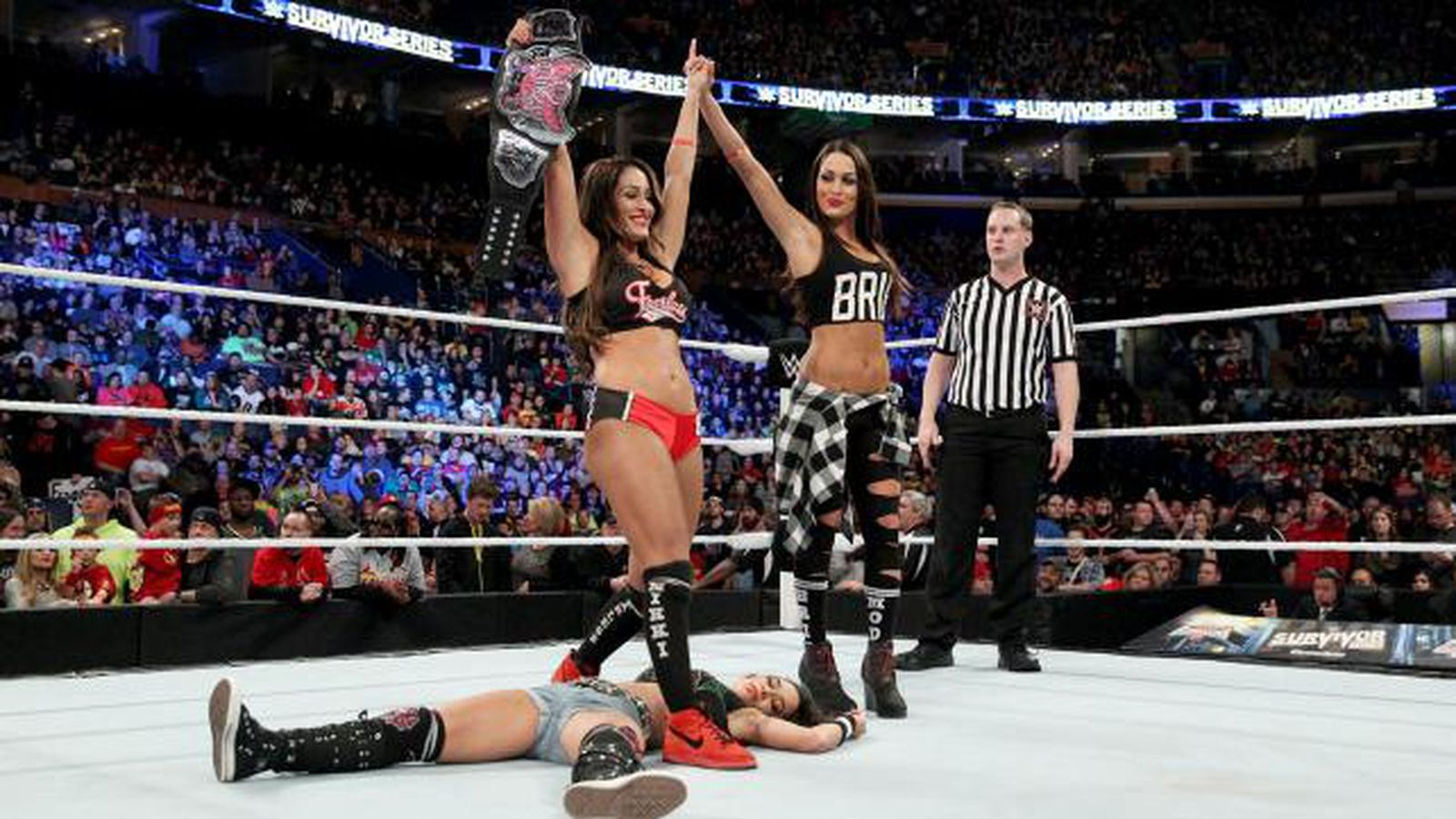 Nikki Bella Has Defended The Divas Title Just 9 Times In