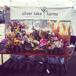 Charming, chemical-free bouquets by Tara Koller of Silver Lake Farms.