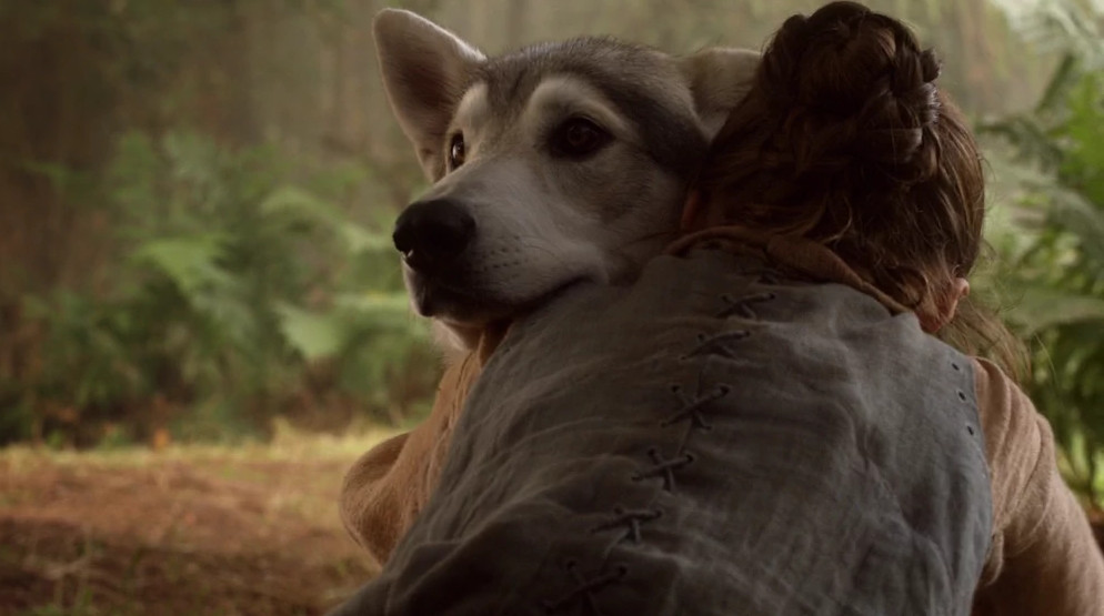 Arya says goodbye to her direwolf Nymeria in Game of Thrones' first season.