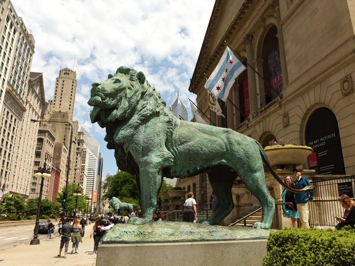 Art Insute Of Chicago Lions