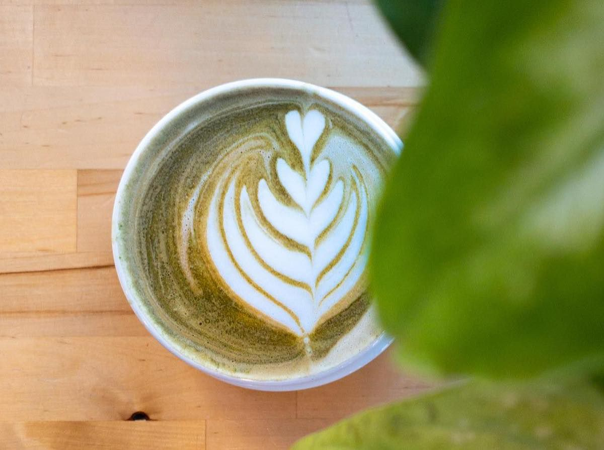 A white bistro coffee cup holds a vaguely green, frothy beverage with floral foam art. It's photographed just below a few leaves of a pothos plant and on the blonde hardwood floor of the cafe.