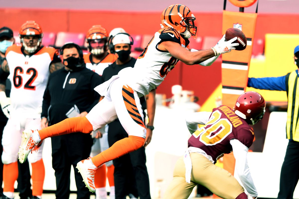 Drew Sample #89 of the Cincinnati Bengals makes a catch during a NFL football game against the Washington Football Team on November 22, 2020 at FedExField in Landover, Maryland.
