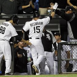 Chicago White Sox's Gordon Beckham (15) is greeted outside the dugout after hitting a home run off Detroit Tigers starting pitcher Doug Fister during the third inning of a baseball game, Tuesday, Sept. 11, 2012, in Chicago.