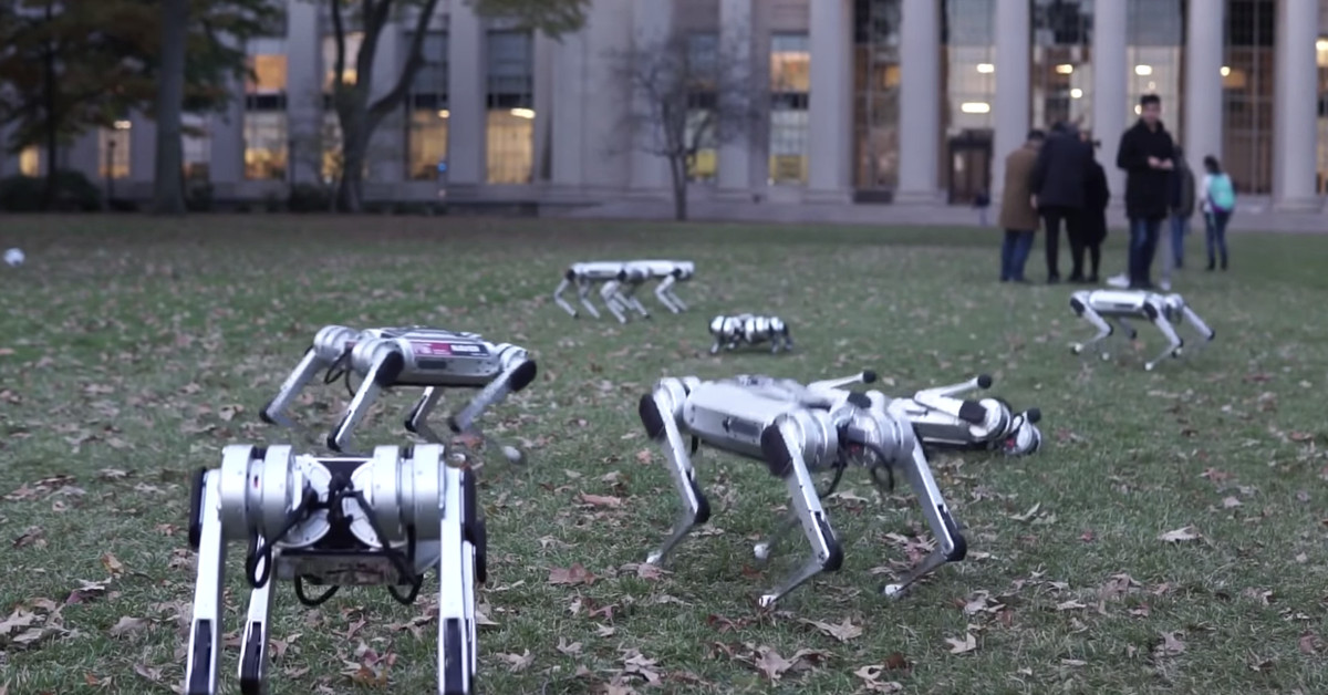 It's that time of year again — fall is here and packs of robot dogs are frolicking in the leaves