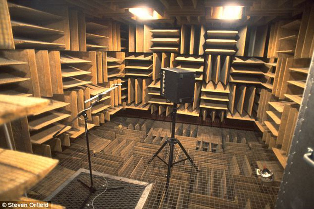 In the world's quietest place, 'you become the sound' - The