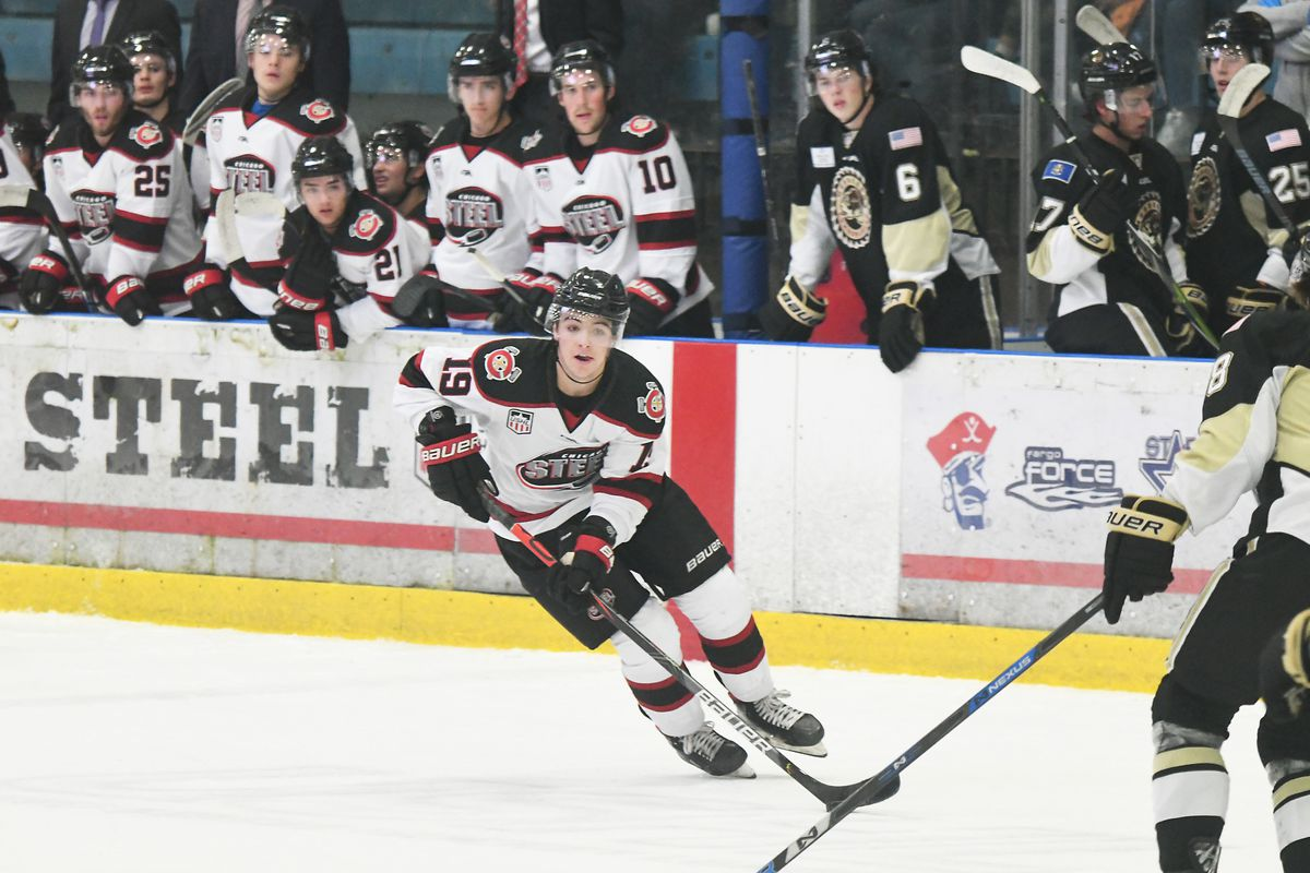 Chicago Steel star Brendan Brisson is a likely first- or second-round pick in the upcoming NHL draft.
