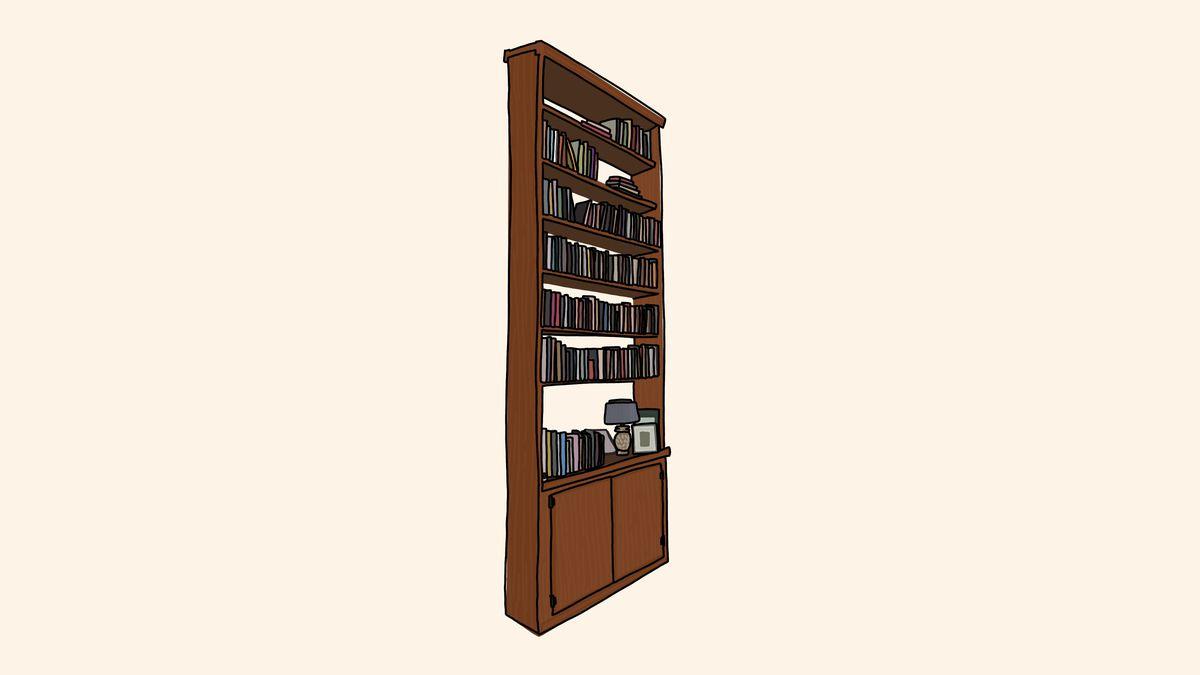 A large custom-built bookcase