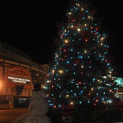 The Cubs holiday tree in front of the Cubs Store. Note that the Wrigley Field marquee is not illuminated