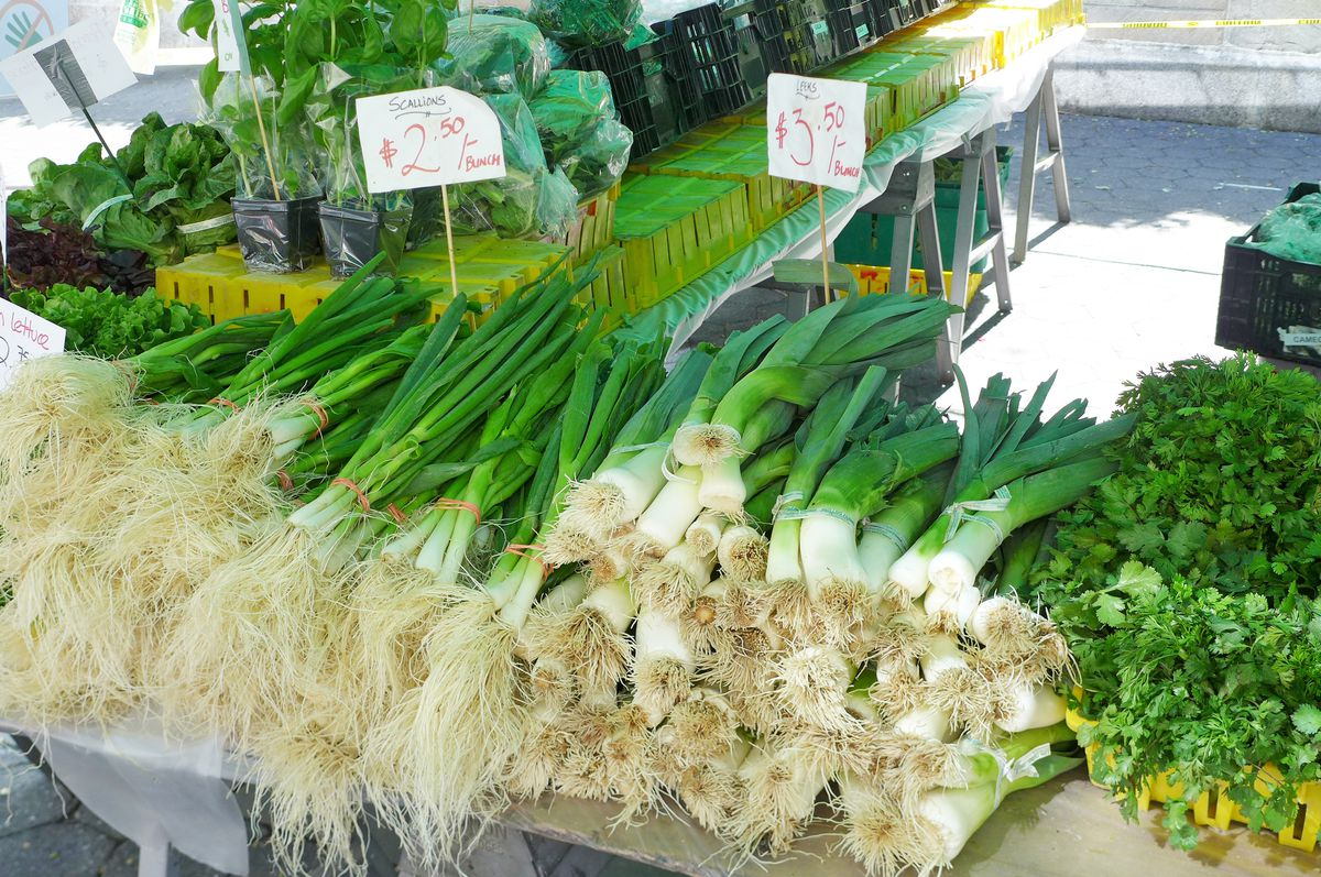 Green onions and leeks on a table.