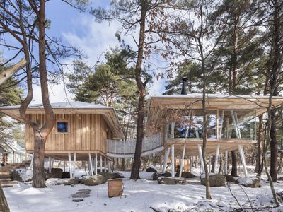 Modern cabin on stilts is an airy nature refuge