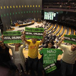 """Environmentalists hold up protest signs that read in Portuguese """"Veto Dilma,"""" """"Mourning for the Forest"""" and """"No to the new forest law"""" during a session by Chamber of Deputies who are expected to vote on a new forest law in Brasilia, Brazil, Wednesday, April 25, 2012.  Environmentalists say that any changes made to Brazil's benchmark environmental laws will damage the Amazon and other areas."""