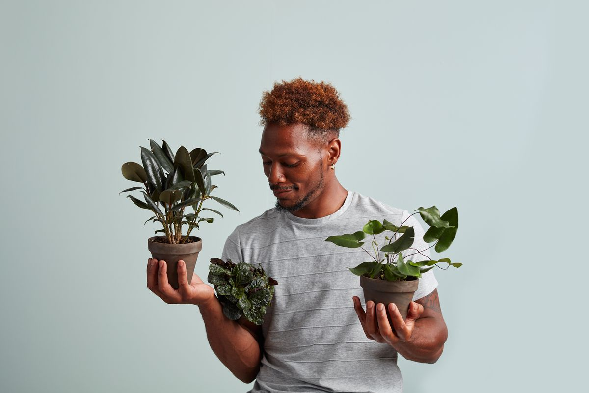 Man holds three potted plants, one in each hand and another tucked under his arm.