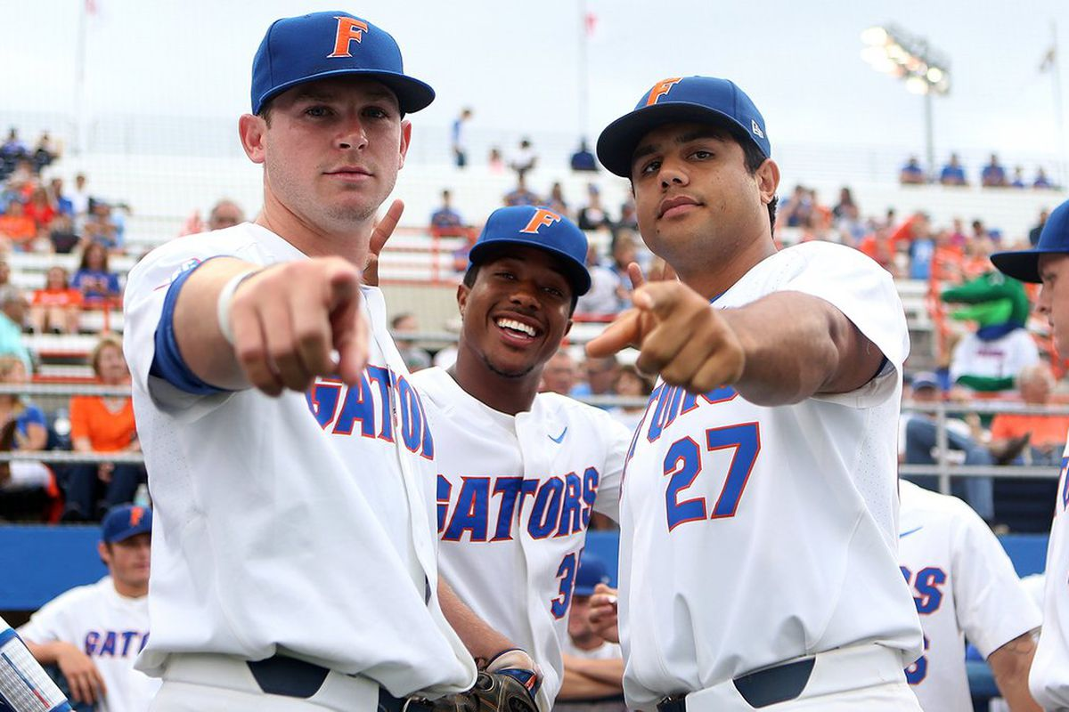 Florida Gators defeat Wake Forest Deamon Deacons 2-1 in 11 innings