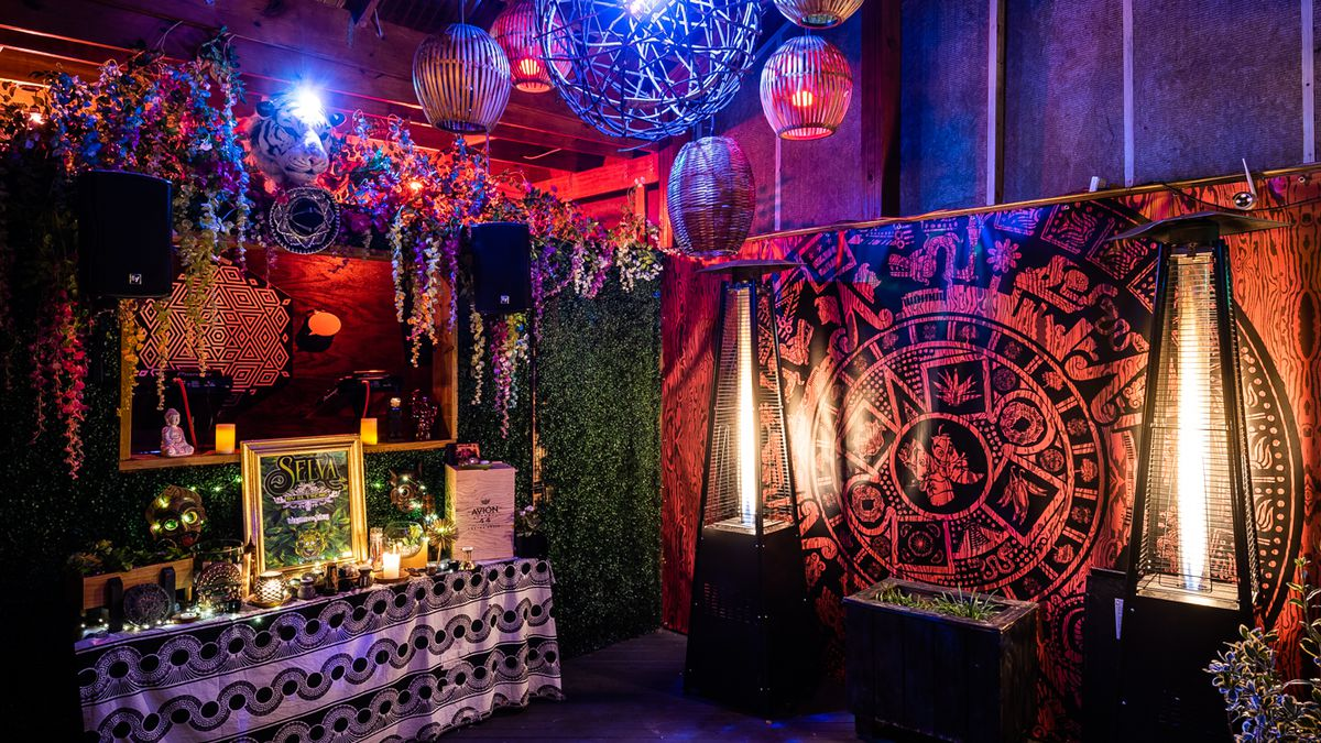 Dc Christmas Bar.Shaw Bar Reinvents Itself As A Latin Jungle Club With