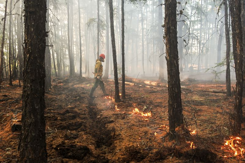 GettyImages_1217494677 Climate change and mismanagement are fueling wildfires from Brazil to the US West Coast