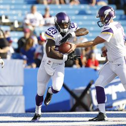Aug 16, 2013; Orchard Park, NY, USA; Minnesota Vikings quarterback James Vandenberg (6) hands off to running back Adrian Peterson (28) before the game against the Buffalo Bills at Ralph Wilson Stadium.