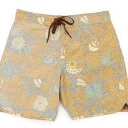 """For the sand and surf lover: Mollusk Trunks, <a href=""""http://www.clarevivier.com/collections/father-s-day/products/mollusk-trunks#Mollusk-Tidepool-Trunks-Size-32"""">$66</a> at Clare Vivier"""