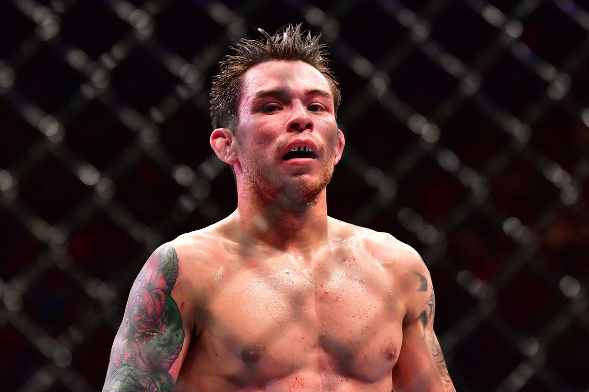 MMA: UFC Fight Night-Formiga vs Borg