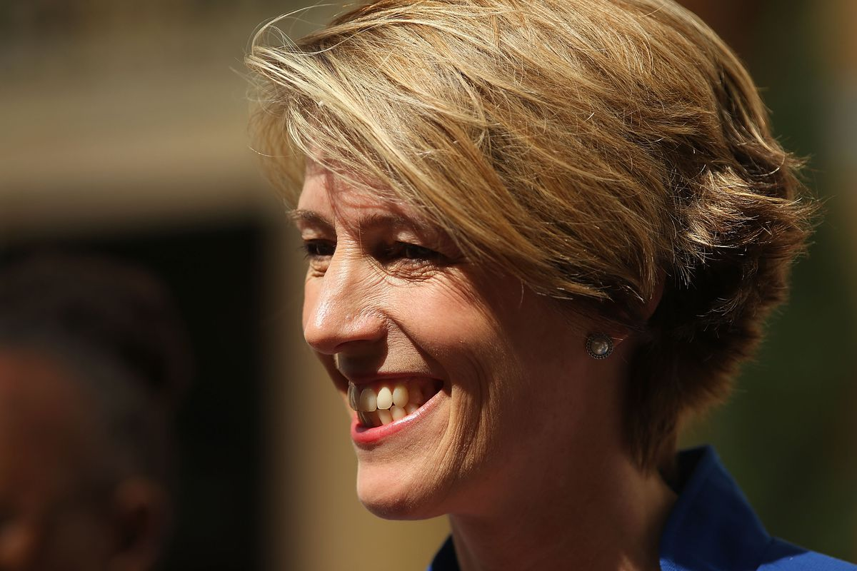 Zephyr Teachout holding a press conference