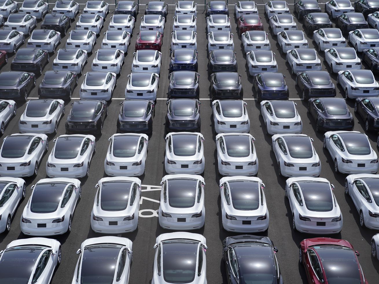 A parking lot full of Tesla automobiles.