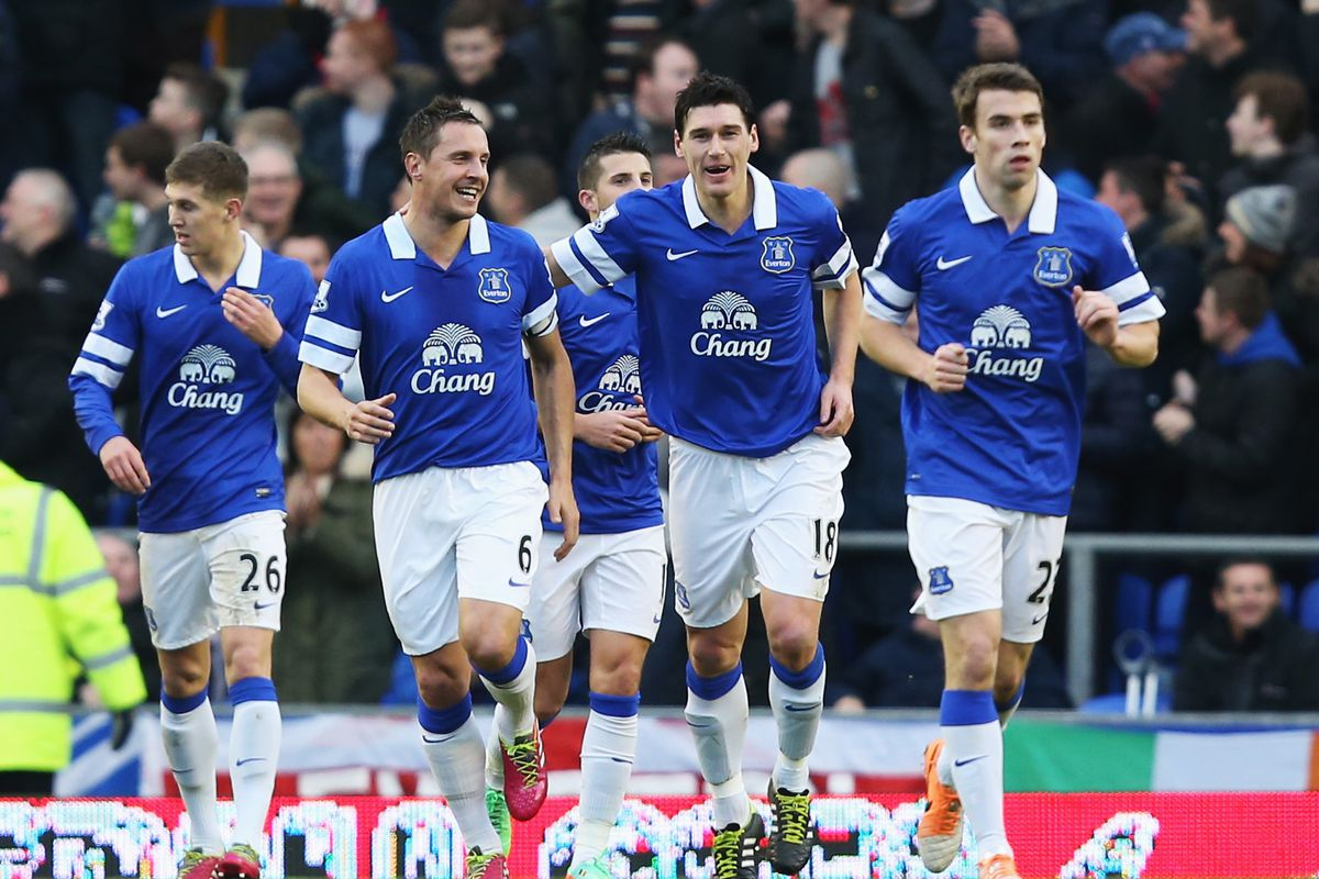 Gareth Barry celebrates his wonder goal, and his 50th in the Premier League, with his Everton team-mates.