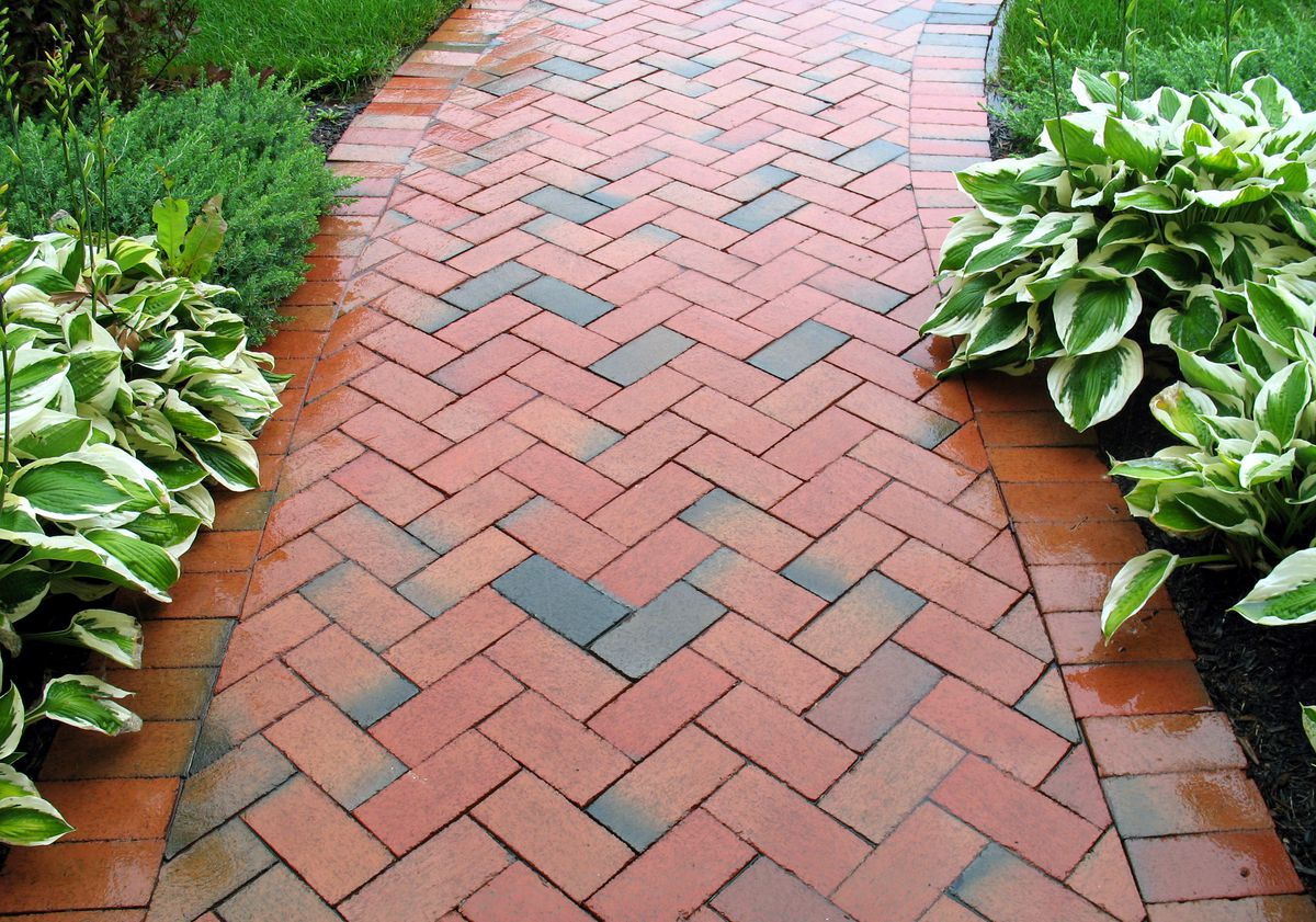 Abstract, Architecture, Backgrounds, Block, Brick, Brown, Classic, Clay, Cobblestone, Flower Bed, Footpath, Formal Garden, Front or Back Yard, Gardening, Geometric, Grass, Home Improvement, Hosta, Land, Landscaped, Lawn, Outdoors, Park, Pattern, Paver Brick, Plan, Plant, Rain, Rectangle, Red, Rural Scene, Sidewalk, Simplicity, Two-dimensional Shape, Wet, redbrick