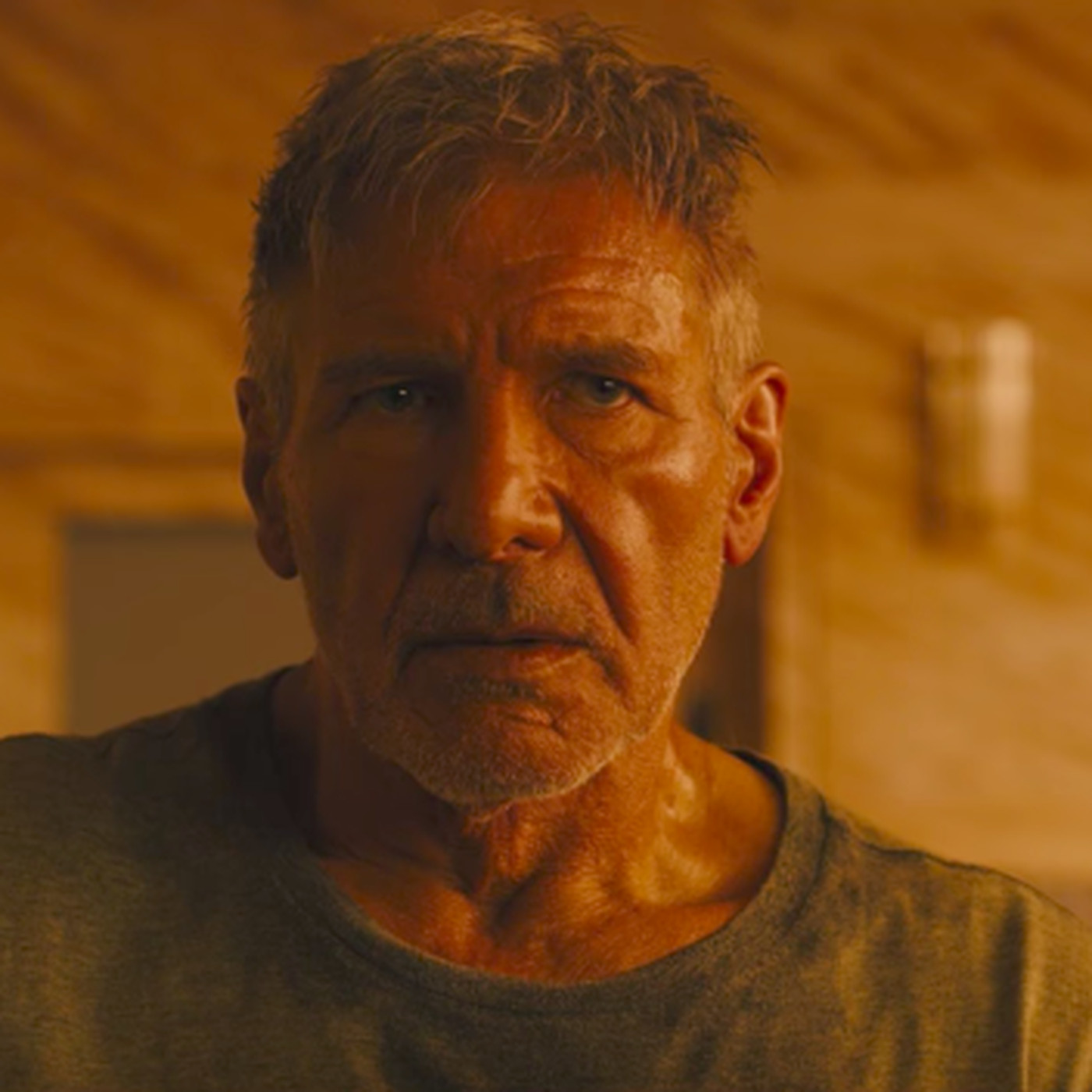 Blade Runner 2049\'s director weighs in on the replicant theories of ...