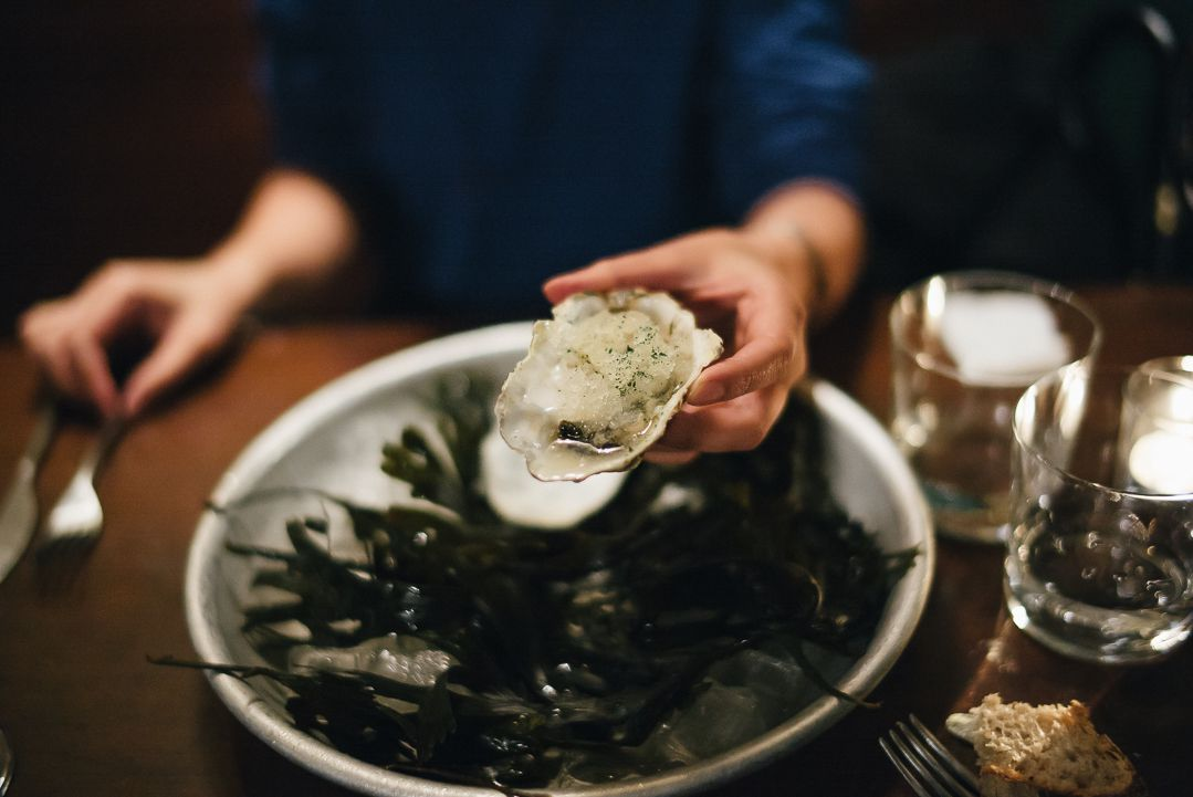 Oysters at Noble Rot, one of central London's best snacks