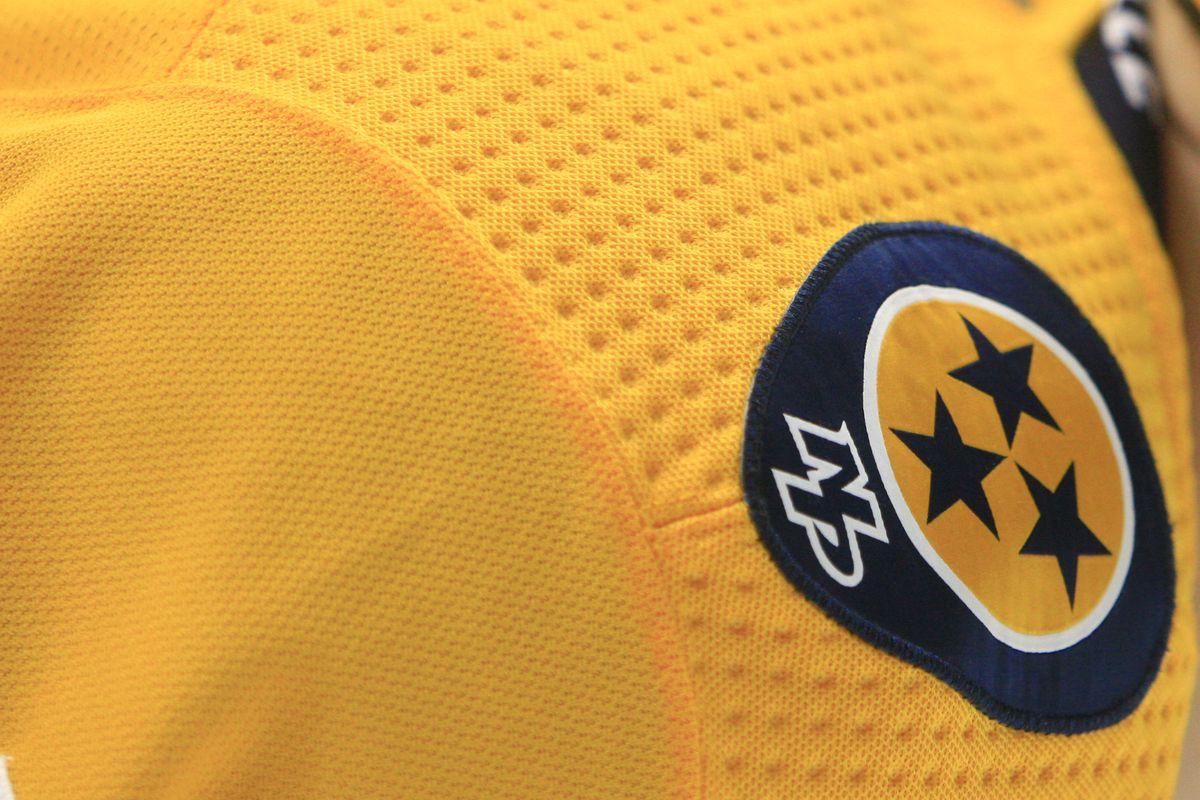 NHL: DEC 14 Stars at Predators