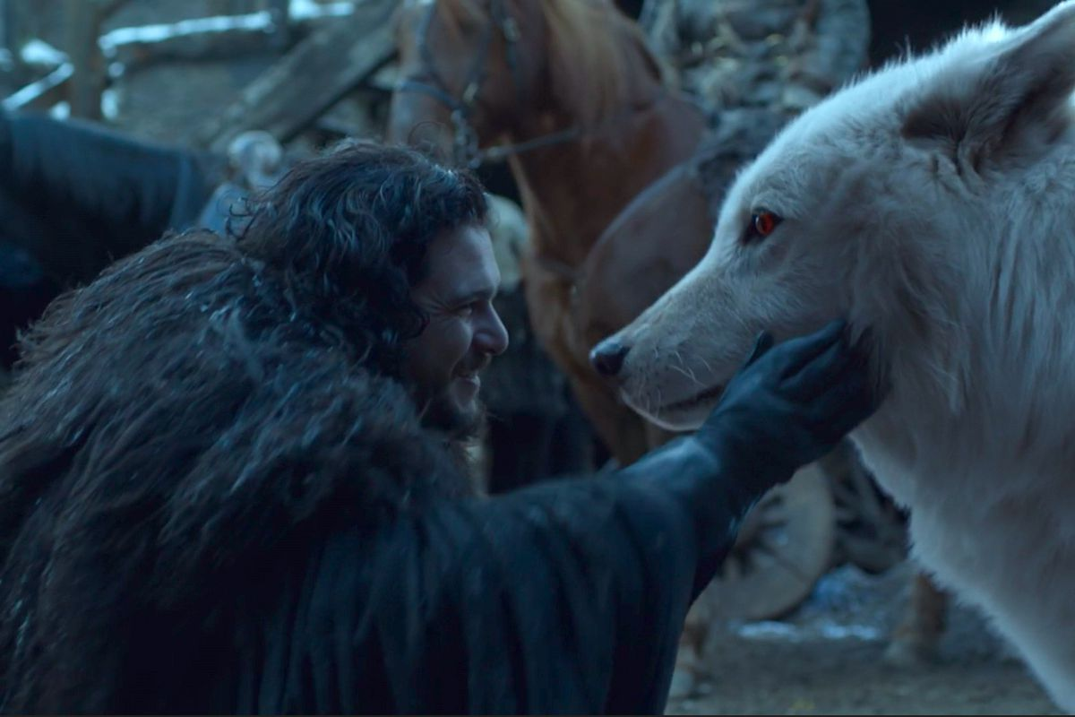 Game of Thrones series finale: Jon reunites with Ghost the direwolf
