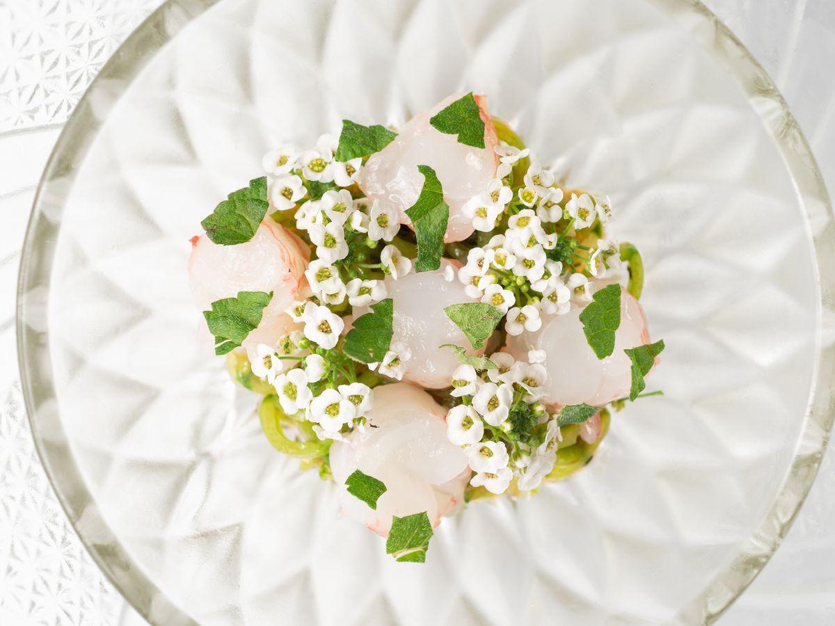 Dish from Kato