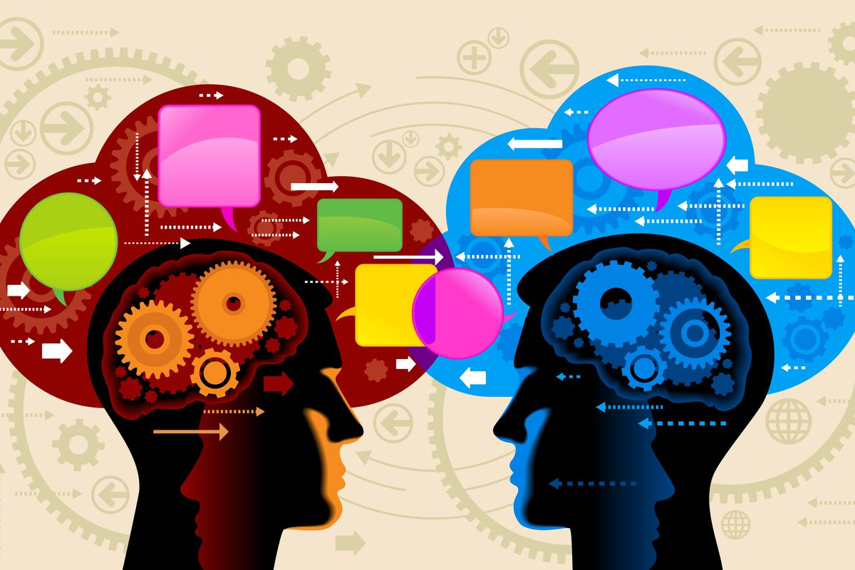 Social science heads art