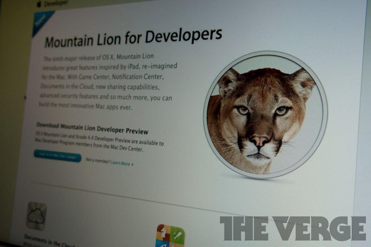 mountain lion developer 1020
